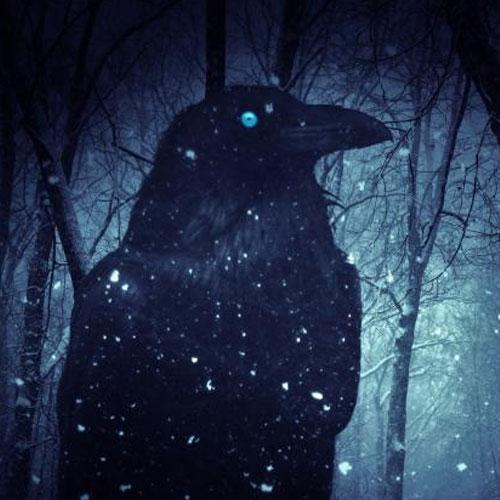 invites-bordeaux-geekfest-Amara Crow